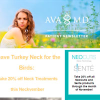 November 2015 issue newsletter TOPICS